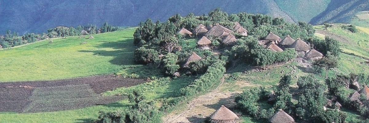 Ethiopia Programs